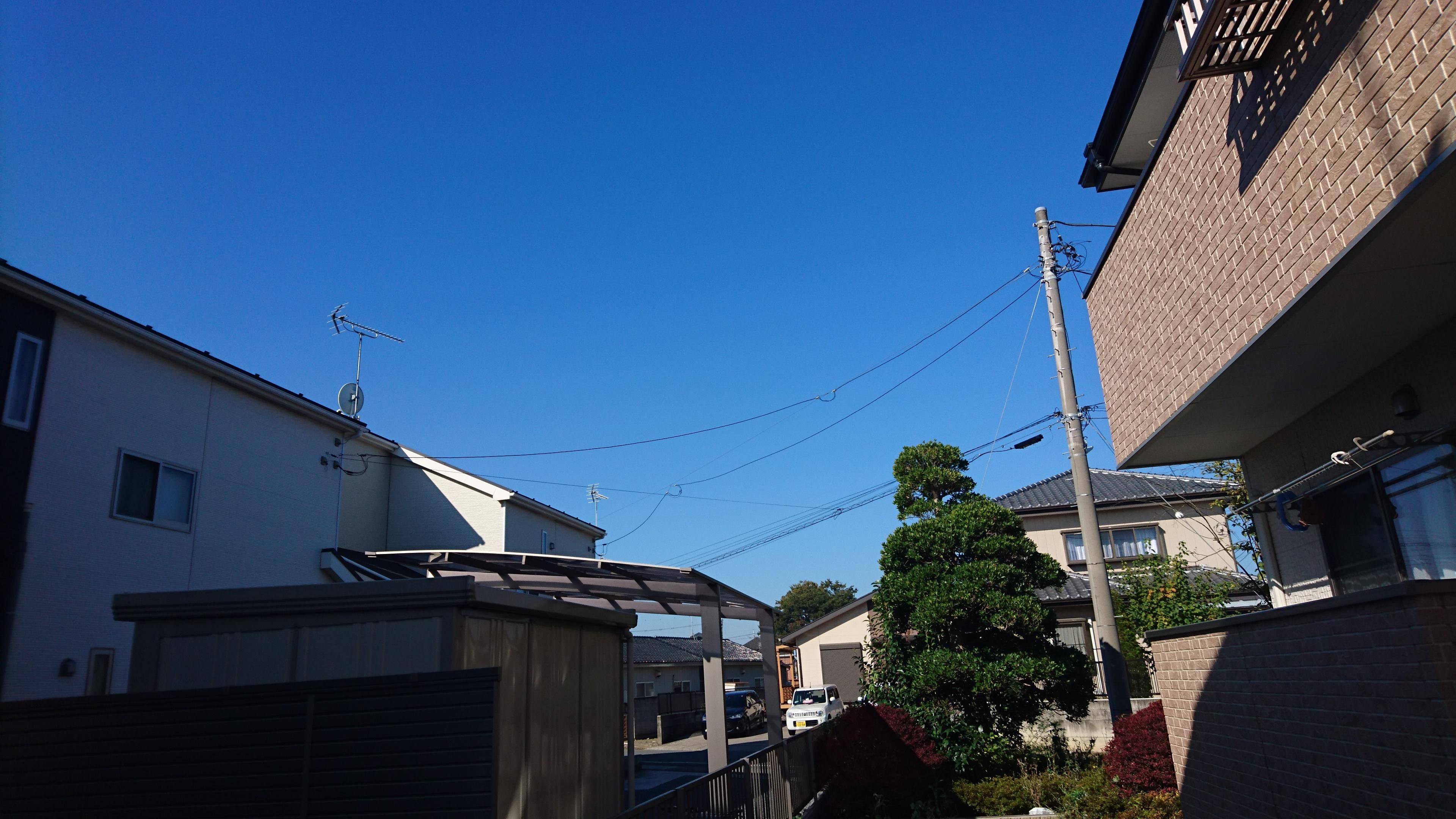 【一戸建てセグメント配布】